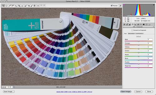 Image in Adobe Camera Raw