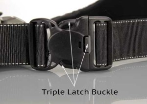 HolsterBuckle