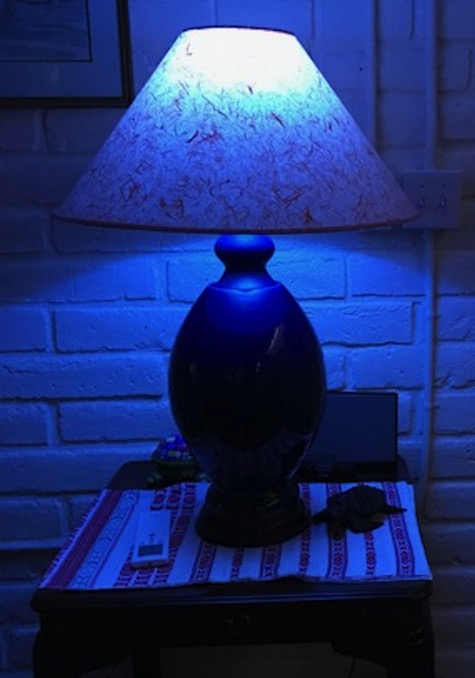 blue-lamp-revogi